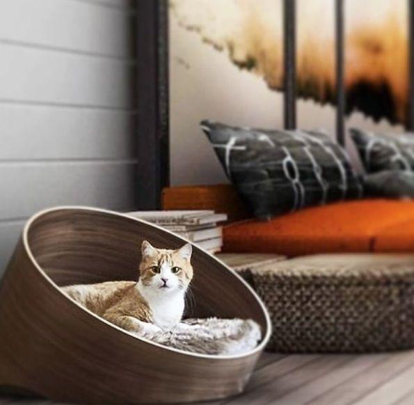 Cama diseño gato